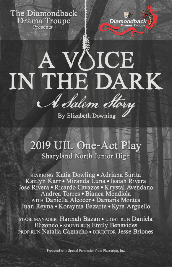 A Voice in the Dark Poster
